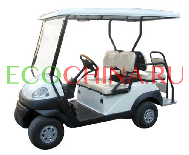 Repow Fore-Runner Leisure Plus 2